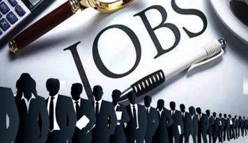 سرکاری نوکری:ہماچل پردیش میں 1600 سے زیادہ عہدوں کے لیے جاری ہوئی ویکنسی