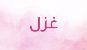 کیا جانیے کیا ہے حدِ ادراک سے آگے ـ ابرار احمد