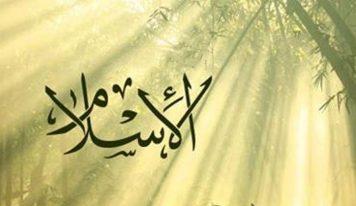 اسلام اعتدال و توازن کا دین ہے -پروفیسر محمد سلیم انجینئر